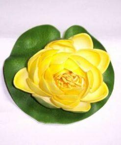 Lotus galben - remediu de protectie
