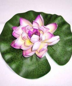Lotus mov - remediu de echilibru si armonie
