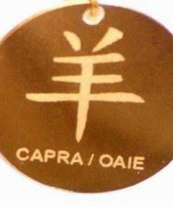 Zodia Capra/Oaie