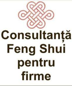 Consultanta Feng Shui pentru firme in afara orasului Brasov