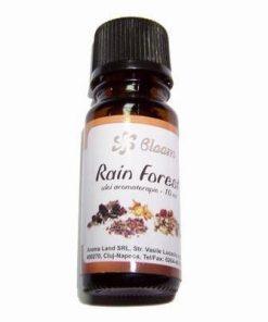 Ulei - Esenta pentru aromoterapie - Rain Forest