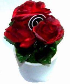 Ghiveci cu florile dragostei - remediu Feng Shui- rosii